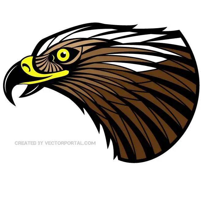 Hawk Graphics Free Vector