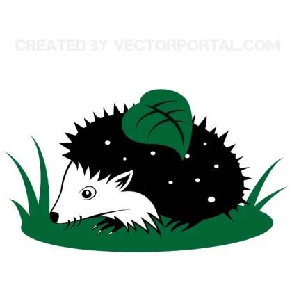 Hedgehog Image Free Vector