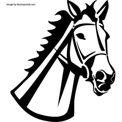 Horse Head Illustration 2 Free Vector