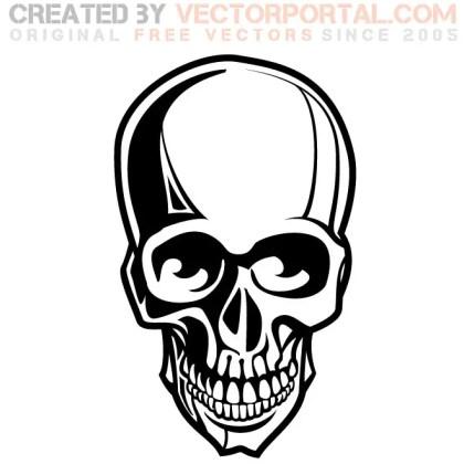 Human Skull Free Vector