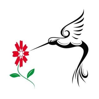 Hummingbird Free Vector