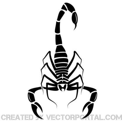 Image of A Scorpion Free Vector