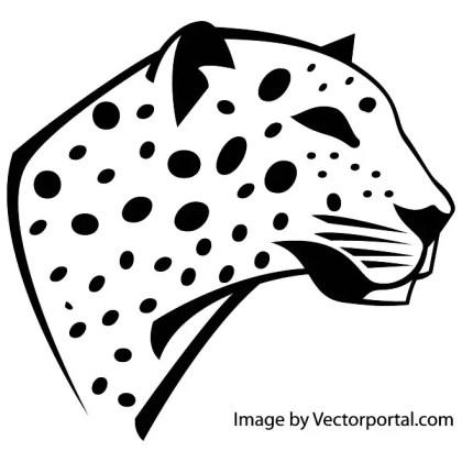 Leopard Head Image Free Vector