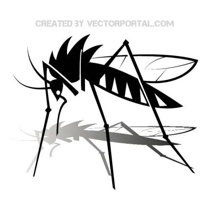 Mosquito Image Free Vector