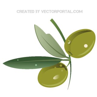 Olive Branch Graphics Free Vector