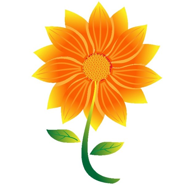 Orange Blooming Flower Image Free Vector