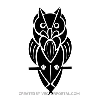 Owl Illustration Free Vector