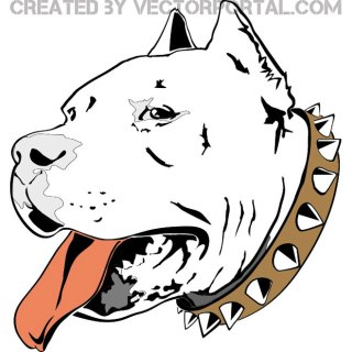 Pitbull Head Free Vector