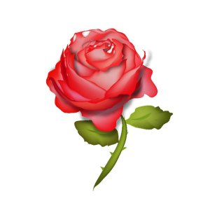 Red Rose Free Vector