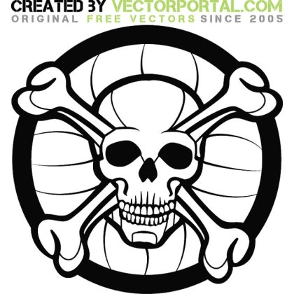 Skull Graphics Download Free Vector