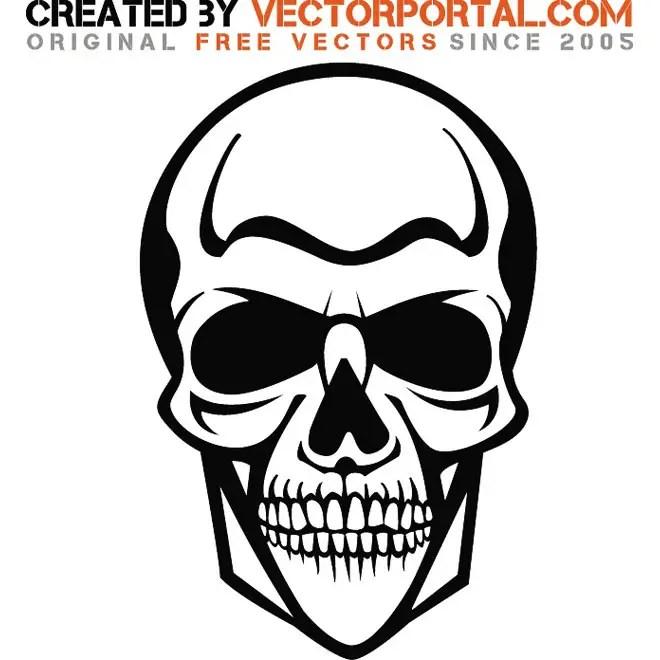 Skull Graphics Image Free Vector