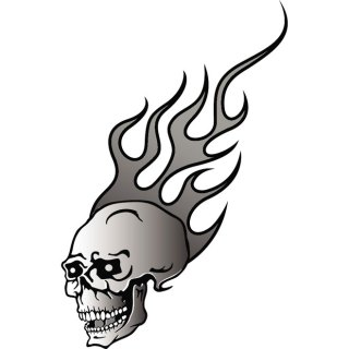 Skull in Flames Free Vector