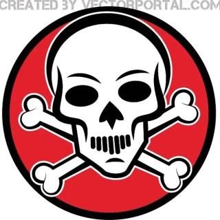 White Skull Image Free Vector