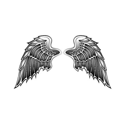 Wings Free Vector