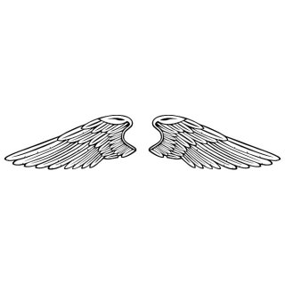 Wings Image Free Vector