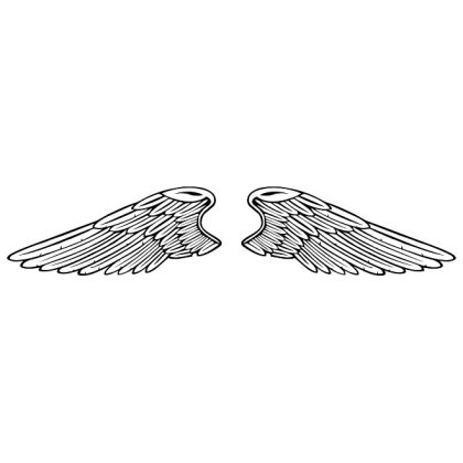 Wings Image Free Vector