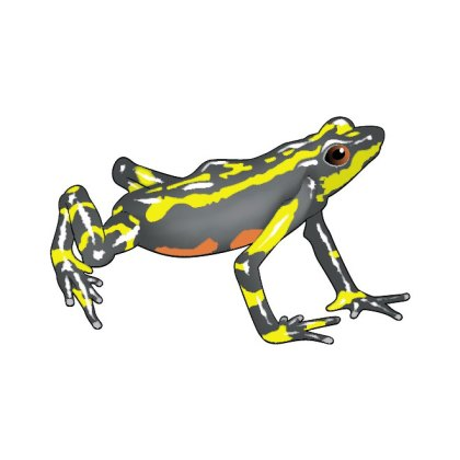 Yellow Frog Image Free Vector