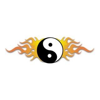 Ying Yang Fire Free Vector