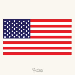 American Flag Flat Design Free Vector
