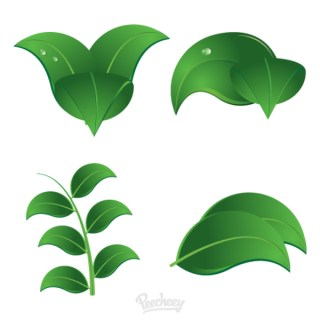 Leaves Free Vector