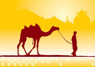 Boy and camel Free Vector