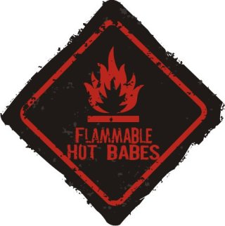 Flammable warning Free Vector