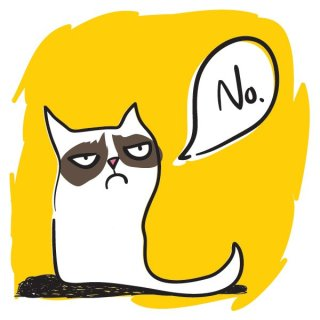 Grumpy Cat Free Vector