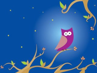 The night owl Free Vector