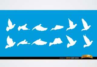 Dove Flying Sequence Silhouettes Free Vector