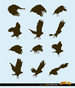 Flying Bird Motion Silhouettes Free Vector