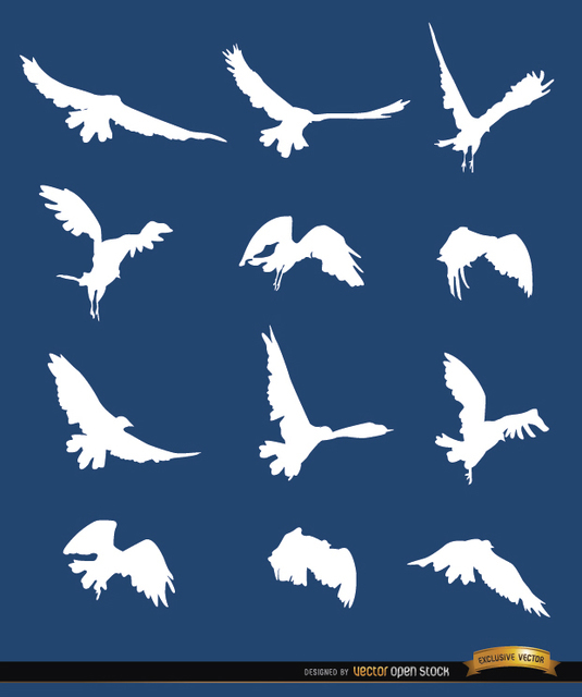 Flying Bird Sequence Silhouettes Free Vector