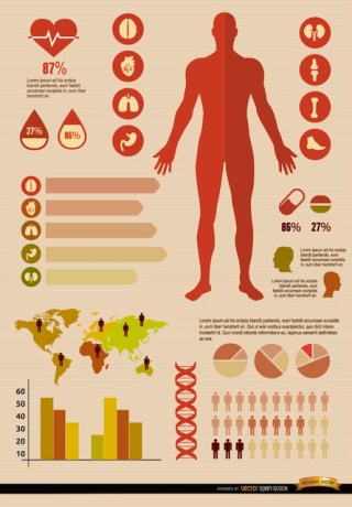 Medical Infographics Resources Free Vector