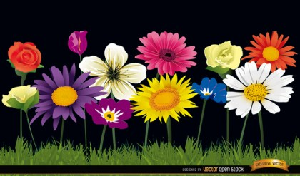 Several Flowers on Grass Background Free Vector