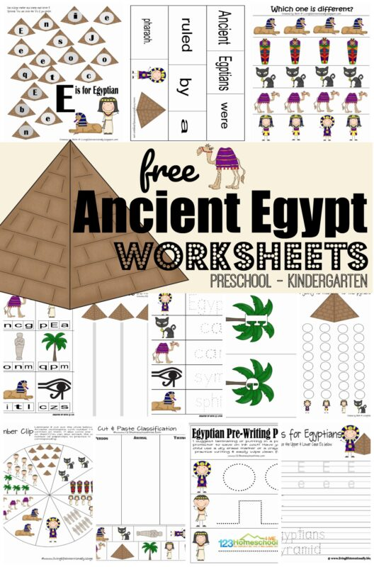 6th Grade Curriculum Worksheets