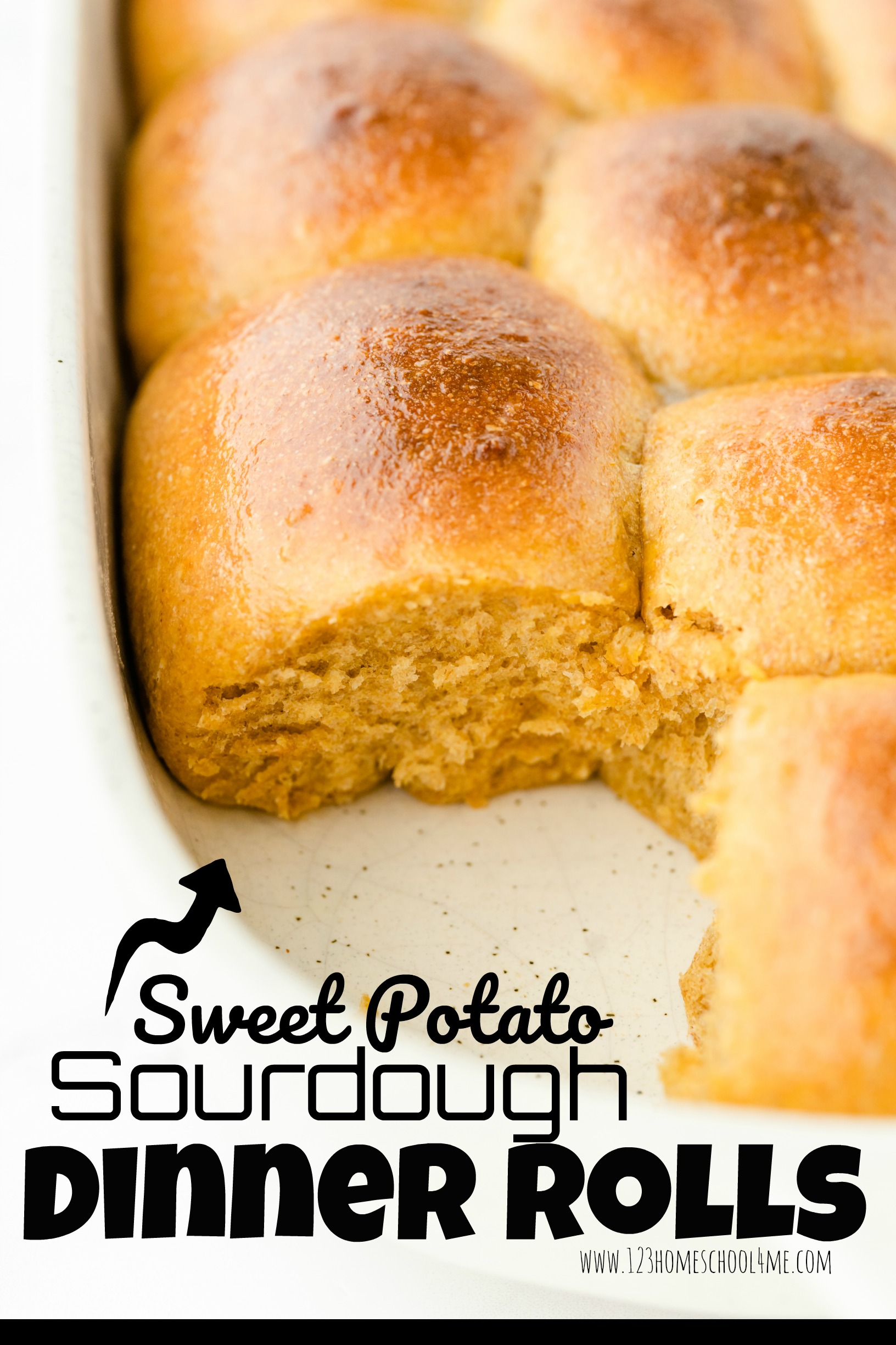Sweet Potato Sourdough Dinner Rolls