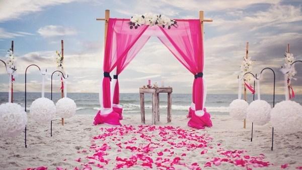 beach wedding  party-123weddingcards