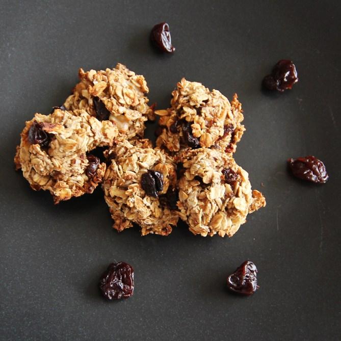 healthy 5 ingredient cookies