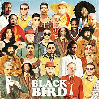 DJ Elite - Blackbird (Album)