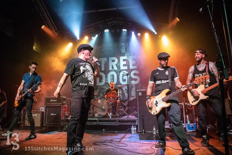 Streetdogs Observatory 2018 24