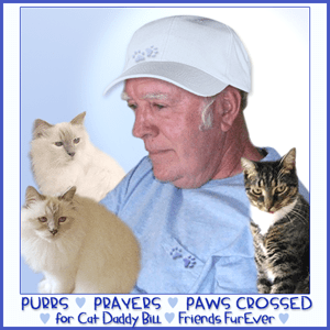 Purrs and Prayers, Bill, FriendsFurEver (Small)
