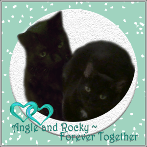Angle and Rocky, Forever