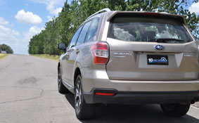 forester23