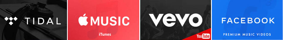 Publish Your Music Videos On Online Video Distribution Platforms including; Vevo, Tidal, Apple Music, Amazon and Facebook PMV.