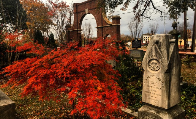 Oakland gates by Pamela Henman