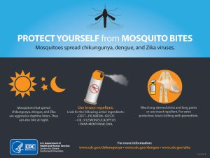 Protect Yourself From Mosquito Bites