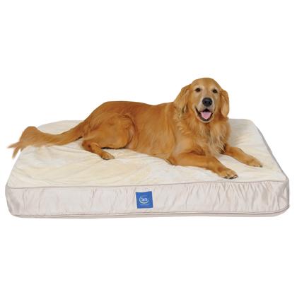 Image Result For Serta Perfect Sleeper Oversized Orthopedic Sleeper Sofa Pet Bed