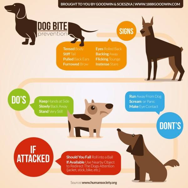 Image result for animal bite liability graphic