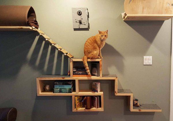 construire un mur pour chat etagere