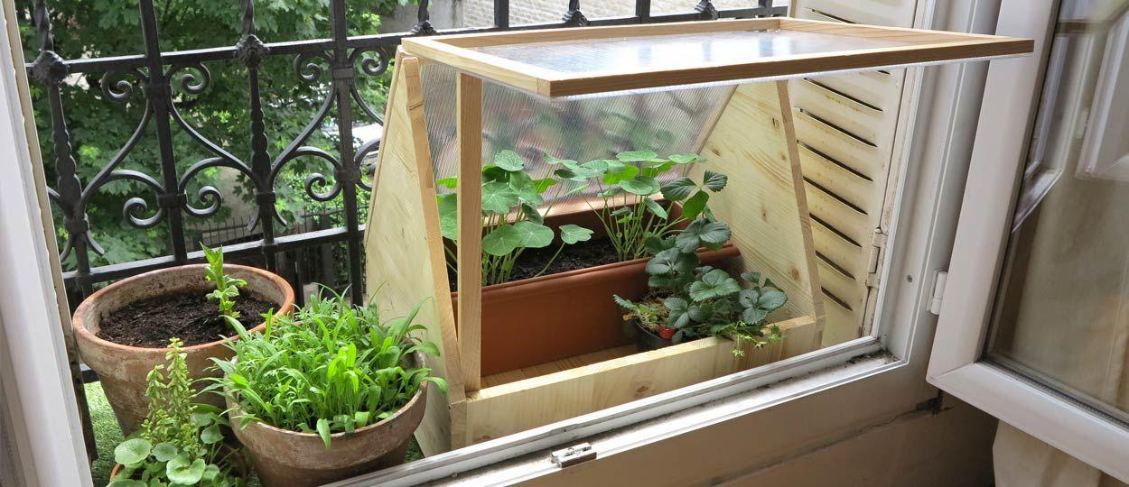 tuto fabriquez une petite serre de balcon pour cultiver en ville