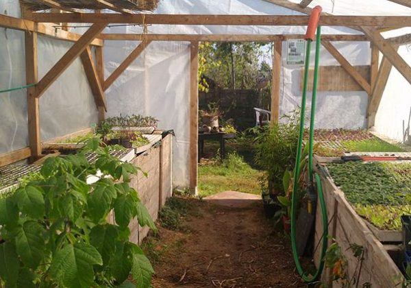 Fabriquer Et Amenager Une Serre Selon Les Principes De La Permaculture